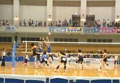バレーボール競技 成年女子